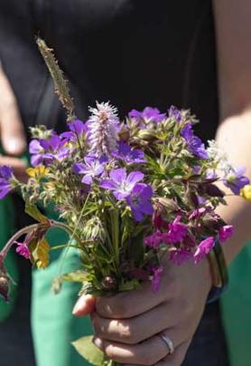 Frauenhand mit einem lilafarbigen Blumenstrauß