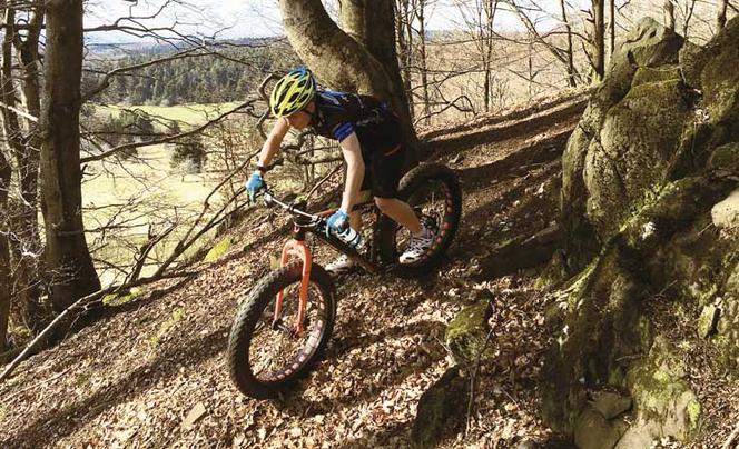 Ein Mountainbiker fährt downhill im Wald